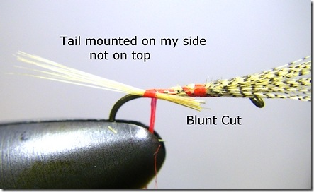 Tail anchored