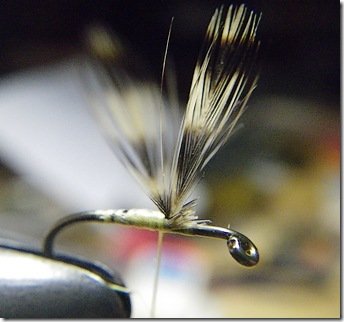 Hackle duff fibers removed