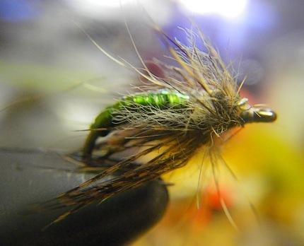 Green  Caddis Shad Experimental