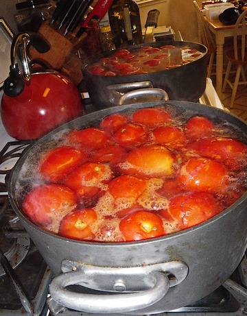 boiling_tomatoes
